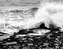 Por la blanda arena que lame el mar