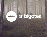 Sr. Bigotes