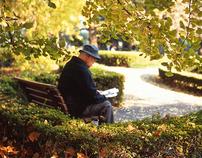 Autumnal Peace