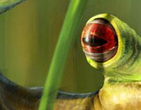 Amazonian Creature