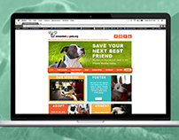 Unwanted NYC Pets Web Design