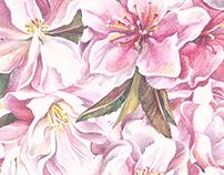 Peach Blossom Pattern