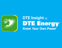 DTE Energy Bridge Promotional Video
