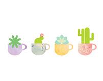 Cactus | Illustración