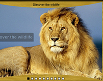 Website Golden safari