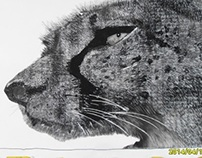 cheetah--charcoal