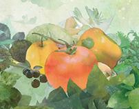 Watercolor  artwork