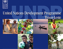 UNDP Marketing Kit & Signage