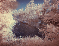 WATER IN THE      WOODS INFRARED
