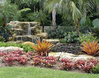 Tropical Landscape Before and After