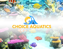 Choice Aquatics Logo & Visual Identity