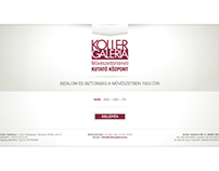 Koller Gallery / Center for Artresearch