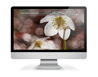 Martin Sinzinger - Website