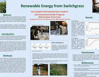 Renewable Energy from Switchgrass