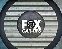 Fox Car Tips - Land Rover