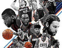 charlotte bobcats / team poster