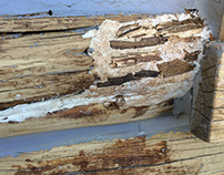 Abatron Epox Repairing of Rotten Log Ft. Collins, CO