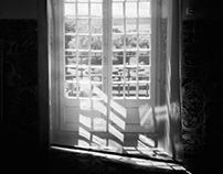 Window to the Garden