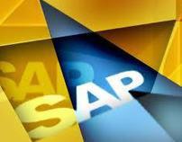 SAP R/3 (PP-MM Module) experience