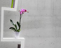 白SHIRO bookshelf