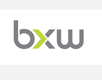 bx worldwide corporate brand development
