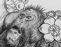 I Love Orangutans.
