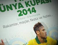 Fifa World Cup Infograpgic