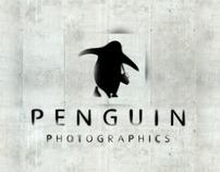 Penguin Photographics - logo & Website