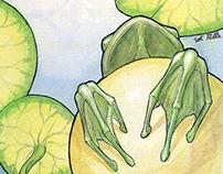 Frog Prince: Decisions