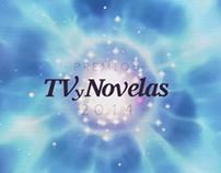 TV - Premios TV y Novelas 2014