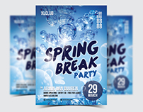 Spring Break Party Flyer / Poster - 17