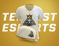 Tempest eSports
