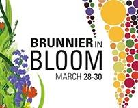 Brunnier in Bloom