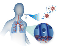 Medical Illustrations - E-Learning Project 2
