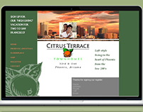 RealEstate Website +BrandDesign