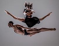 Dance Fest 4