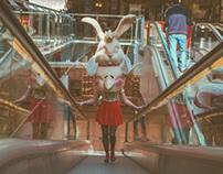 Bunny Pickwick