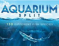 Aquarium Split poster