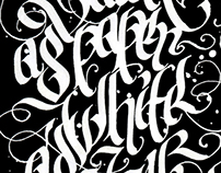 A calligraphic experiment. By Simen Meyer
