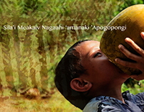 Tonga: House of Healthy Food