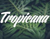 Marca de Cosméticos Tropicana