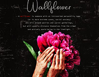 A WALLFLOWER