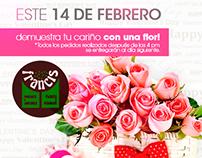 FRANCIS, Floreria 14 Febrero