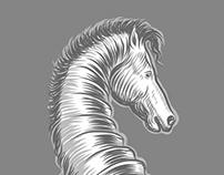 Nautilus horse