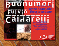 Poster Visiting Professors / A.Buonumori - F.Caldarelli
