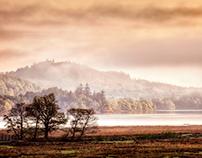 Lakeland. Cumbria. UK.