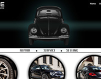Website Interface Design Concept Beetle