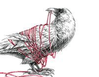 Illustration: White Raven