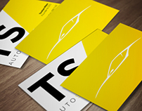 Logo and business card design for TS Auto Styling