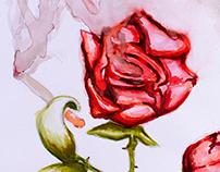 Nicotine addicted rose 2013